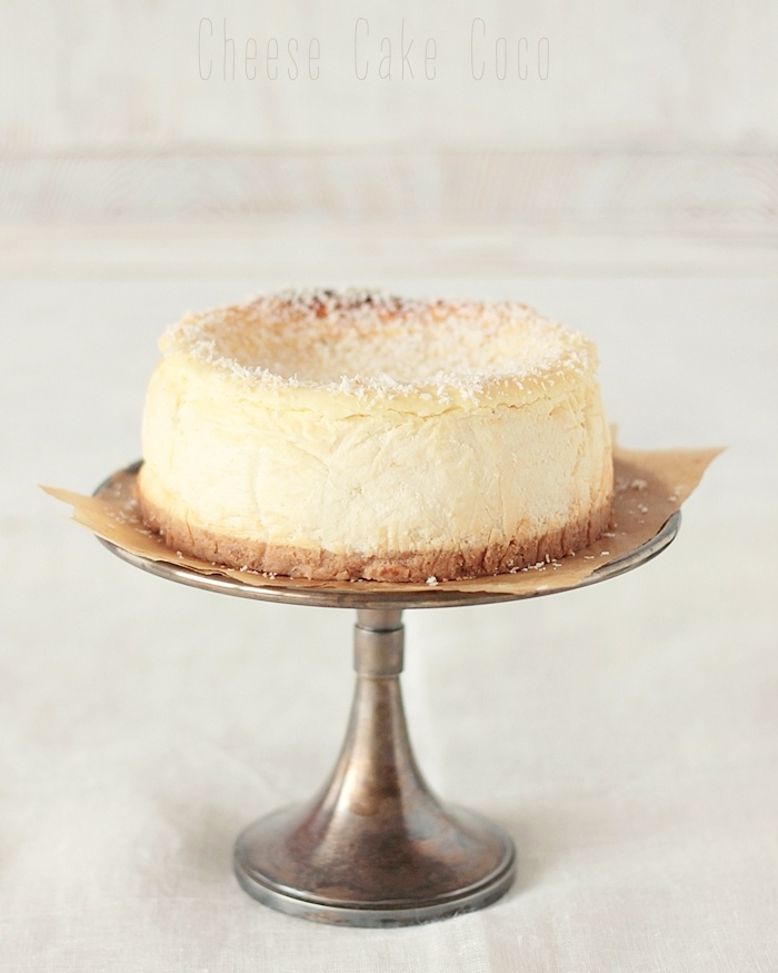 cheese cake coco (3)